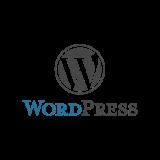 https://superbnexus.com/wp-content/uploads/2020/11/WordPress-160x160.png